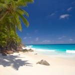 seychelles island - 3442