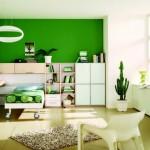 Modern-Green-Boy-Bedroom-Design-961x630 - 5130