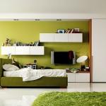 غرفة لونها عشبي اخضر