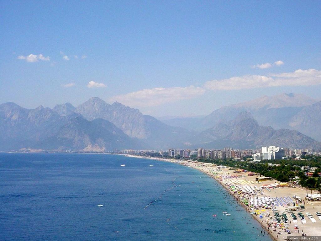 روعة الشاطئ