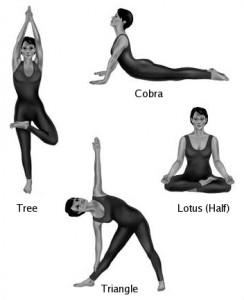 ماهي اليوجا فوائدها yoga-2-244x300.jpg