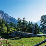 الحديقة الوطنية السويسرية في سويسرا