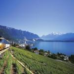 جمال الطبيعة بحيرة جنيف في سويسرا