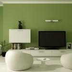 لون اخضر مميز - 21341
