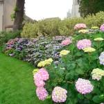 Beautiful-Home-Gardens - 18109