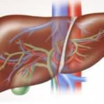 الوقاية والعلاج من التهاب الكبد الوبائي