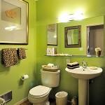 حمام صغير باللون الأبيض والأخضر