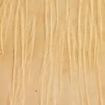الكثبان الرملية - 29616