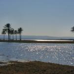 اطول اهم الأنهار تاريخيا … نهر الفرات