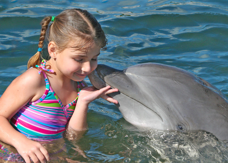 florida keys dolphins dolphin research center kiss full اروع صور الدلافين   Coolest pictures dolphins