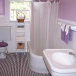 حمامات صغيرة باللون الموف
