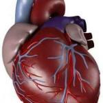 اسباب و علاج اعتلال عضلة القلب