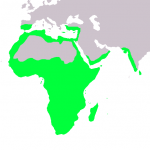 خريطة للاماكن التى ياعيش فيه الحرباء - 38731