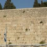 كوتيل إسرائيل