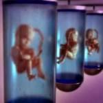 معلومات عن اطفال الانابيب والتلقيح الاصطناعي