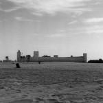 قصر الحصن عام 1951