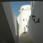برج قصر الحصن