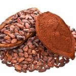 فوائد واضرار الكاكاو