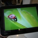 الواجهه الامامية للتابلت  توشيبا Tablet Toshiba Excite Pro