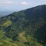 green-mountain-tops - 58124