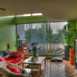 تزيين المنزل بالنباتات الطبيعية