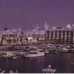 فندق بارك حياة دبي - 95727