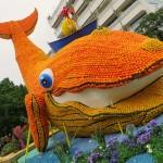 مهرجان الحمضيات السنوي في حديقة Biovès بالريفيرا الفرنسية