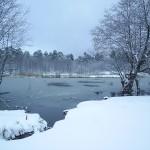 اطلالة على يالوفا في الشتاء