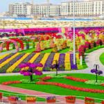 الحديقة المعجزة أكبر حديقة زهور طبيعية في العالم