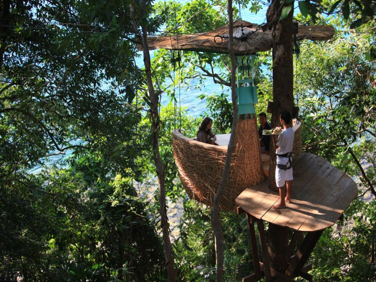 مطعم في شجرة
