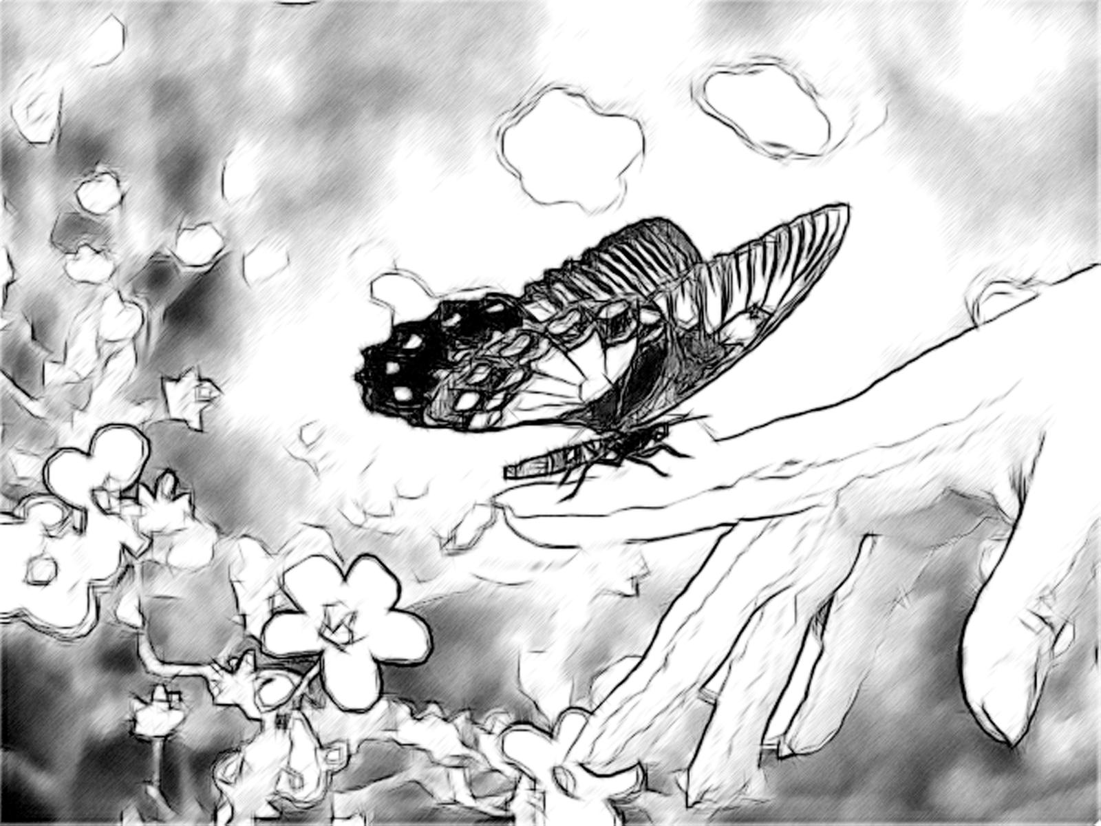 رسومات رائعة art-drawings-in-penc