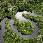 نهر الأمازون - 119384