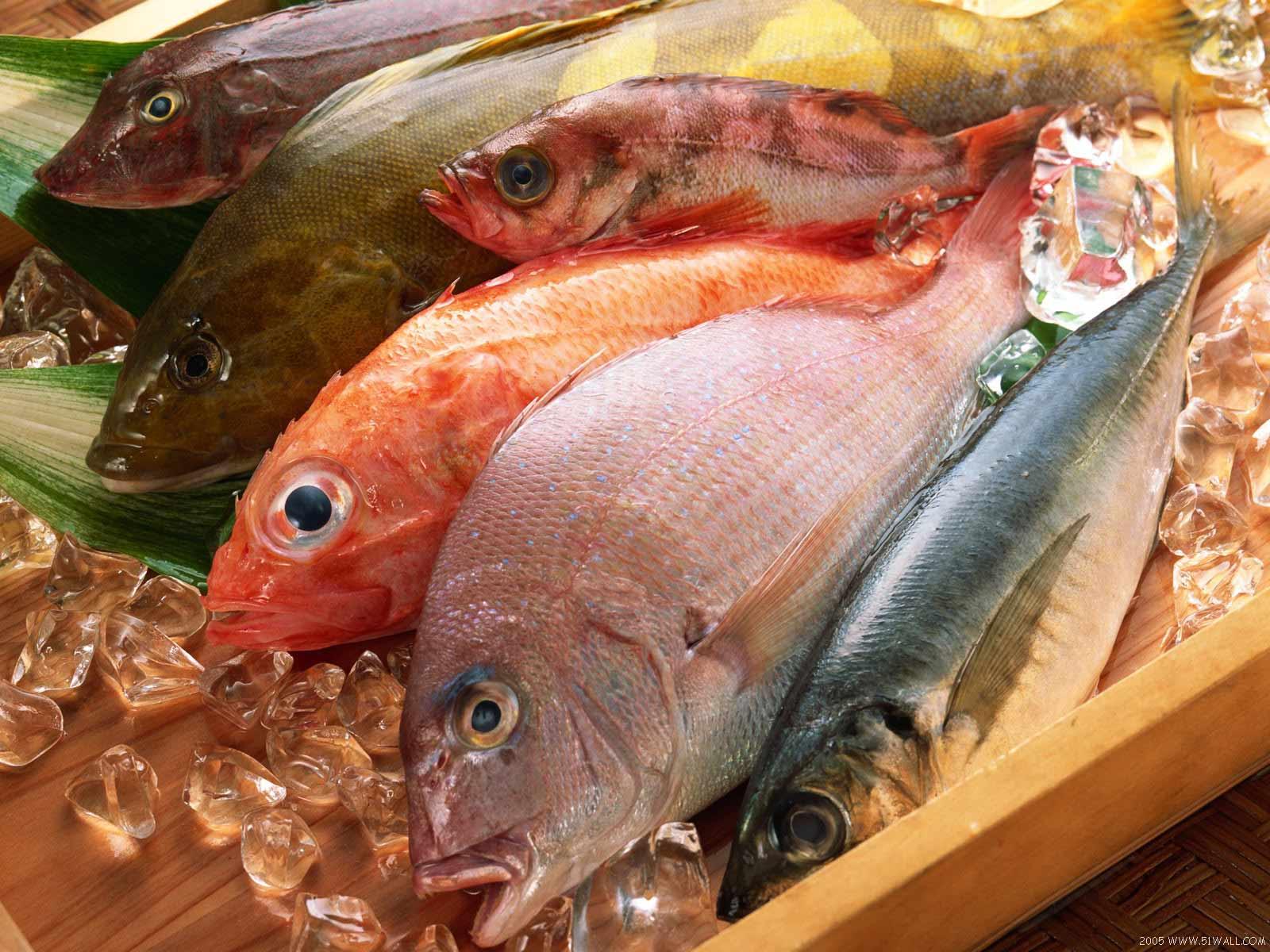 http://www.almrsal.com/wp-content/uploads/2014/04/Fish3.jpg