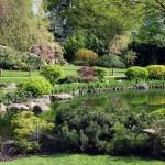 هولاند بارك ... حديقة عامة في غرب لندن