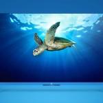 تلفاز شيومي Xiaomi Mi TV2