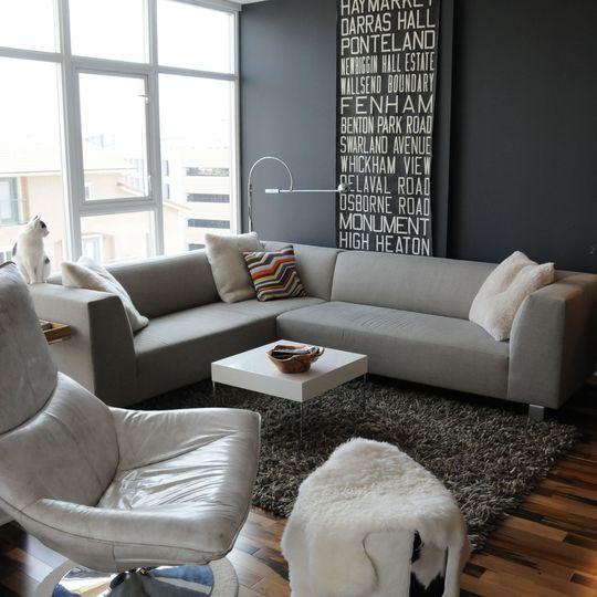 Grey Living Room Decorating Ideas: سجادة ناعمة باللون الرمادي