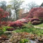 حدائق اكسبيري