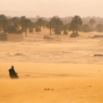 Old man walking through a sandstorm across a graveyard, Faya Largeau, Chad - 148456