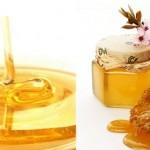 العسل وفوائدة على الجسم
