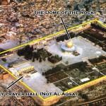 الفرق بين قبة الصخرة والمسجد الاقصى