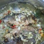 وضع السمك فوق البصل قبل اضافة الارز