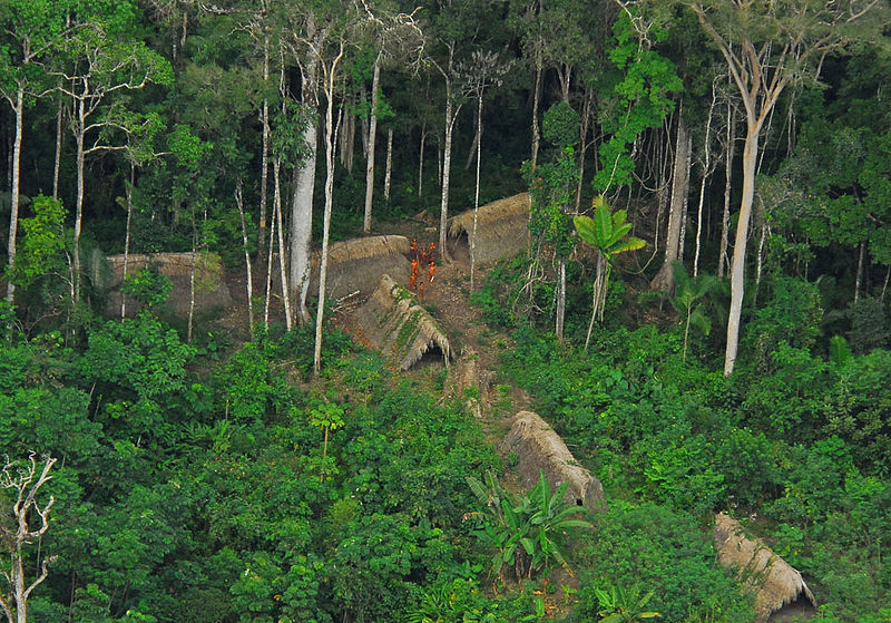 Uncontacted indigenous tribe in the brazilian