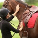 يمكن أن يكون الحصان صديق هادئ  - 182034