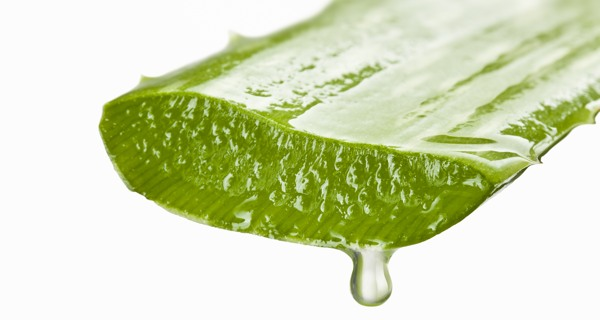 حلول لعلاج مشكلة الشعر الخفيف وصفات طبيعية لتكثيف الشعر Uses-of-aloe-vera-gel-for-better-health-and-beauty