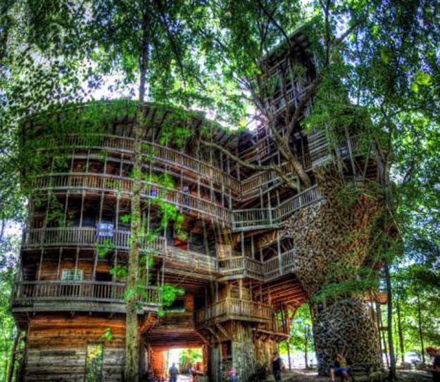 أغرب المنازل منزل شجرة الوزير منزل-الأشجار.jpg
