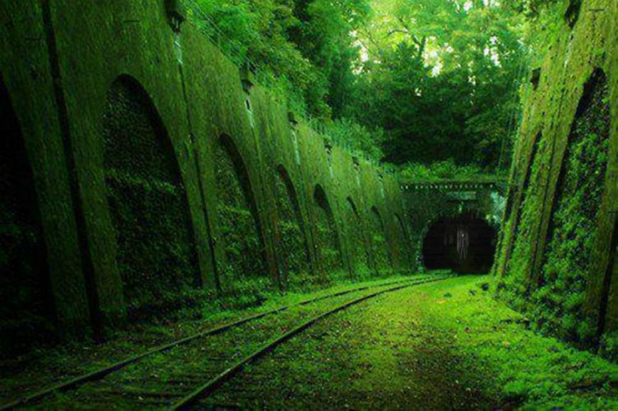 أماكن مهجورة Overgrown-Railway-In-Paris.jpg