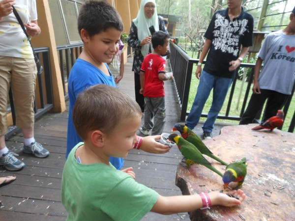 استمتاع الاطفال في حديقة الطيور، كوالا لمبور