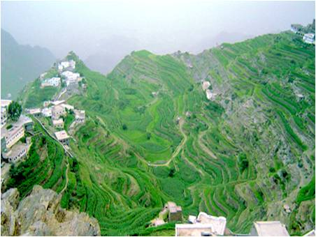 مجموعة من جبال فيفاء