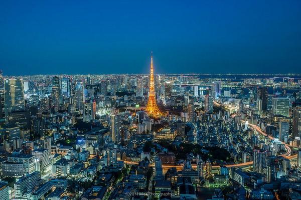 منظر جميل لمدينة طوكيو ريغا