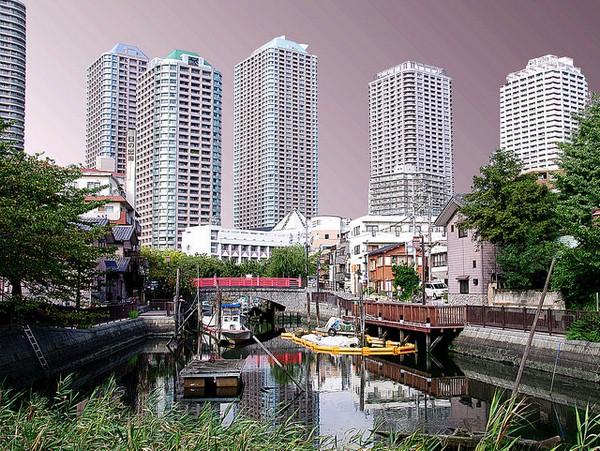 مدينة طوكيو مع اطلالة على salt lake city